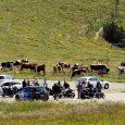 L'ALSACE – 02 05 2021 – Olivier BRÉGEARD https://www.facebook.com/florent.arnold.52/posts/307144974271389 Éviter une nouvelle ruée en montagne L'association des fermes-auberges du Haut-Rhin demande aux autorités d'envoyer « un message fort » dès […]